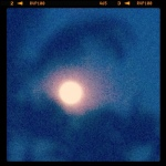 Tiger Full Moon August 1, 2012