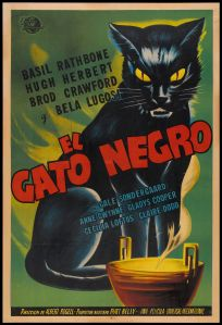 Black Cat!