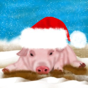 Holiday Pig