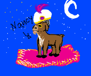 Nancy the Goat has a magic carpet