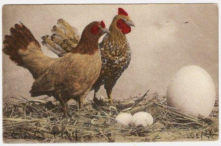Giant Bird Egg