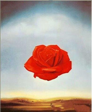 Salvador dali Repro Rose