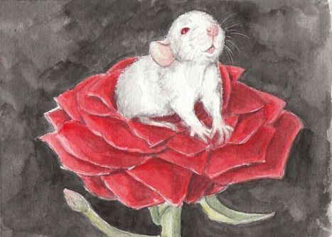 Little Rose Rat