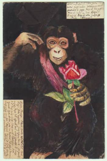 Monkey with Rose