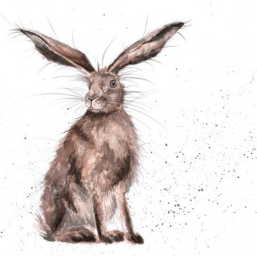 the country set lucky hare