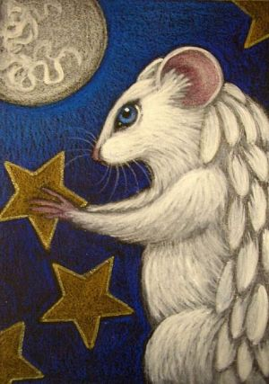 White Angel Rat