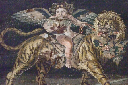Dionysiac Mosaic of cupid or young Dionysos riding a tiger from the House of the Faun in Pompeii Roman 1st Century CE