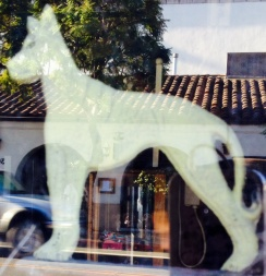 Ghost dog {photo by China Rose}