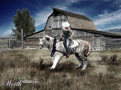 Lady Rides a Tiger