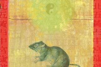 Rat by Stephanie Dalton