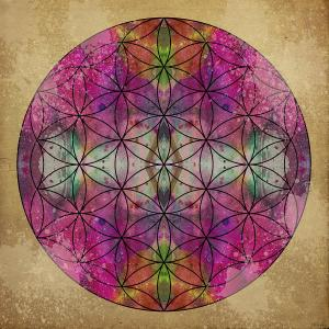 Flower of Life | Filippo