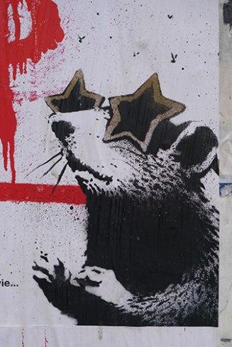 Rat Star