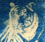 Tiger | science & art