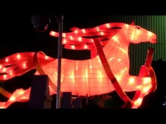China Town Horse