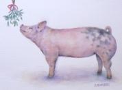 kiss me pig