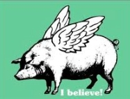 Pig's fly | believe
