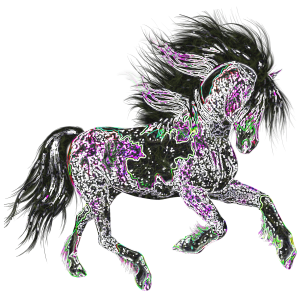 Night Star Horse