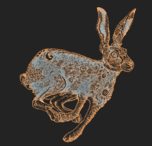 Eclipse Hare | China Rose