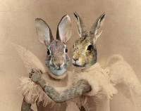 Steampunk Angel Bunny Sisters | Frankenkitty