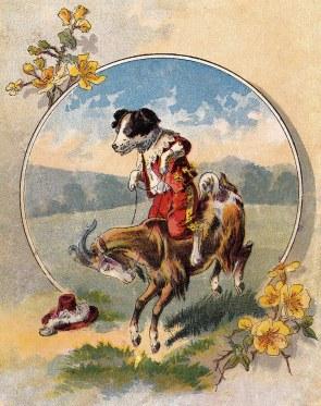 Dog Riding a Goat | vintage card