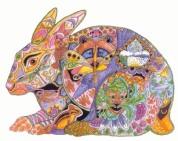 Hare | Sue Coccia