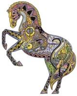 Horse | Sue Coccia