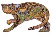 Jaguar | Sue Coccia
