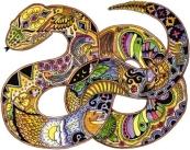 Snake | Sue Coccia
