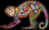 Zen Monkey | Sue Coccia