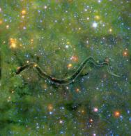 Ghost Snake | Milky Way