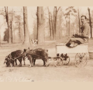 No Spin Zone | vintage pig cart