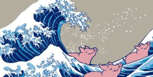 Pig Surf | co-create