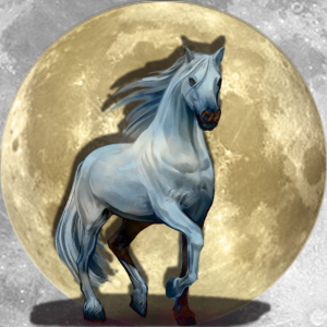 Lucky Moon Pony | China Rose