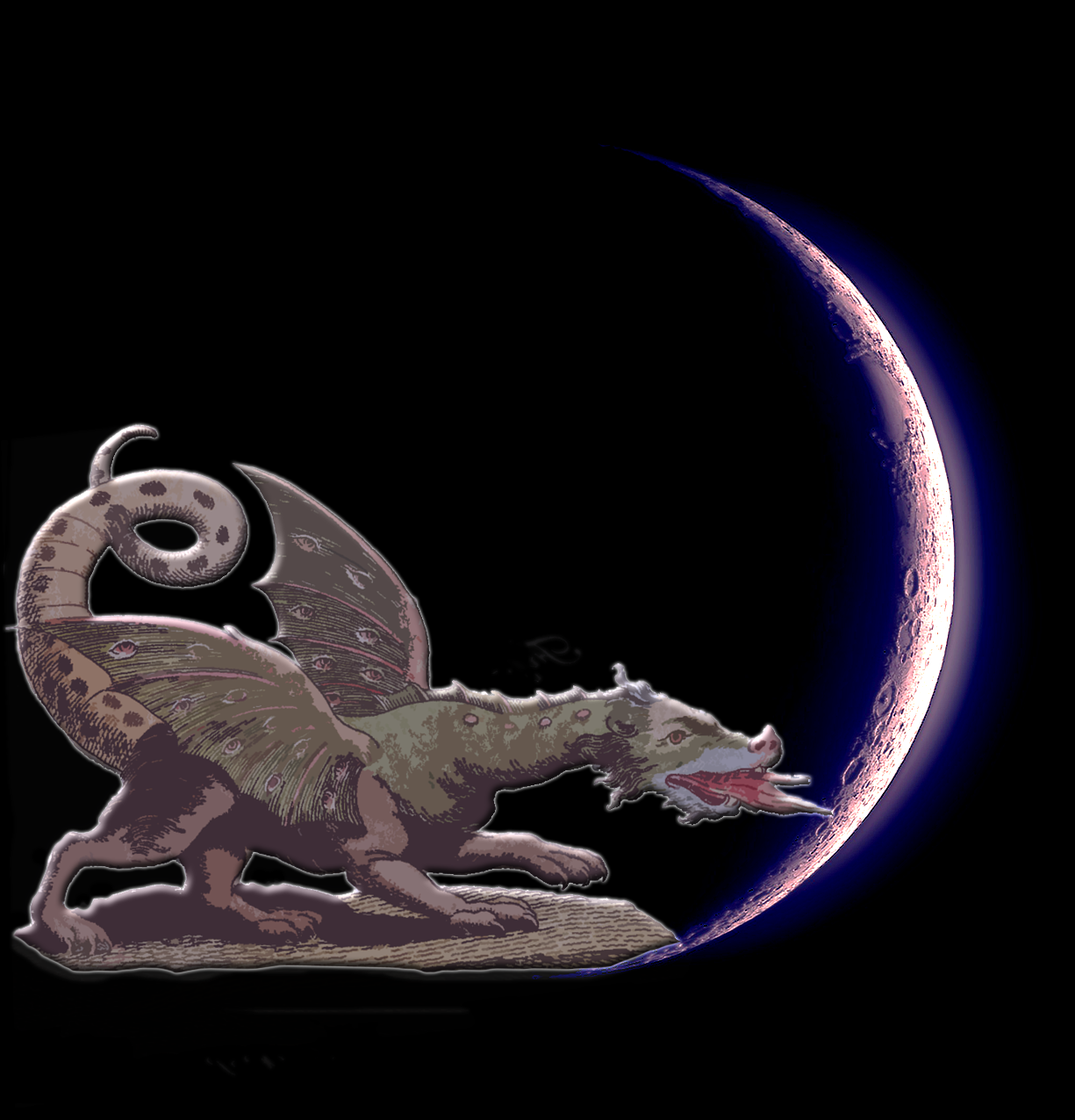 Retro Reptile Moon Kittysol