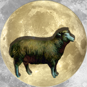 Lucky Moon Lamb | China Rose