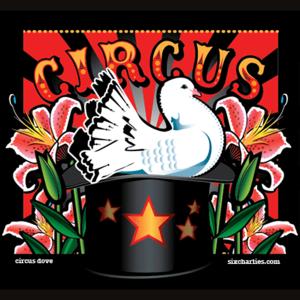 Circus Dove