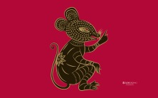 Zune Rat | Sua