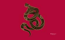 Zune Snake | Sua