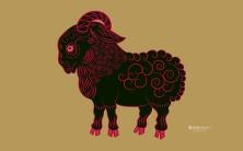 Zune Ram | Sua