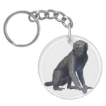 Lucky Monkey | key charm