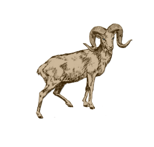 Zodiac_Goat_sign