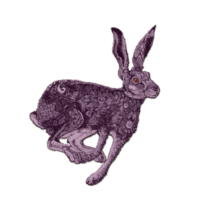 Zodiac_Hare_sign