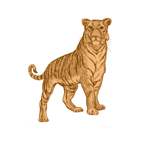 Zodiac_tiger_sign