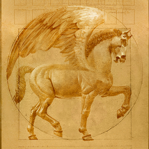 Pegasus | Corey Wolfe
