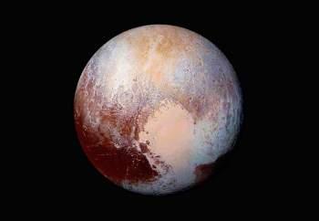 Pluto | wild @ heart
