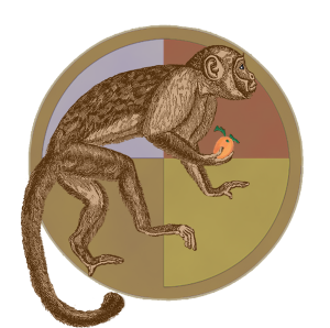 Zodiac Monkey | by China Rose