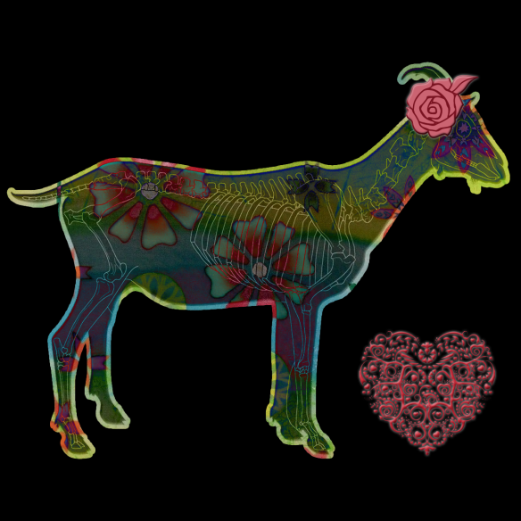 Goat Love   by China Rose