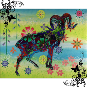 Goat Glow   by China Rose