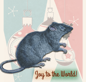 Holiday Rat | by China Rose