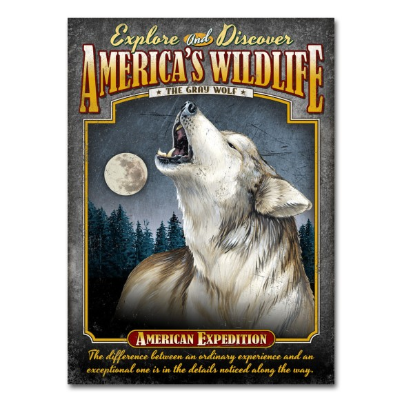 Explore America's Wildlife